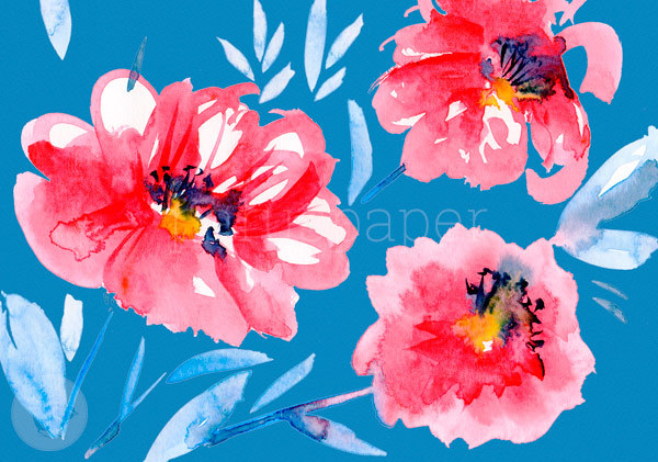 "Greeting Card ""poppies"""
